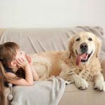 Living with Pets - Tips to Reduce Pet Odors